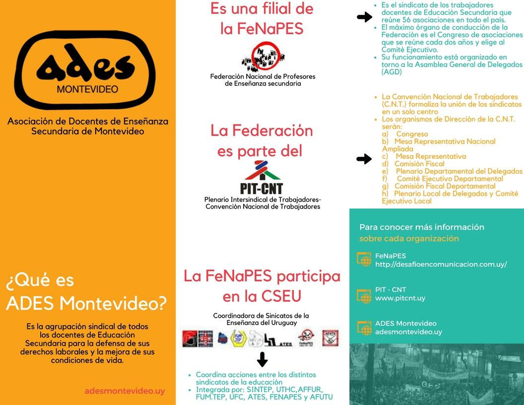 Federación y Convención